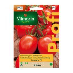 Pomidor szklarniowy wysoki Cencara F1 Vilmorin