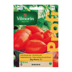 Pomidor szklarniowy wysoki Big Mama F1 Vilmorin