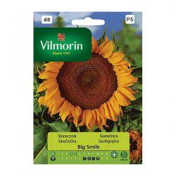 Słonecznik Big Smile Vilmorin