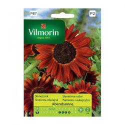 Słonecznik kwiatowy Abendsonne Vilmorin
