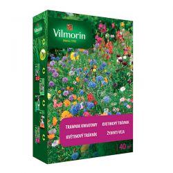 Trawnik Kwiatowy mieszanka traw Vilmorin